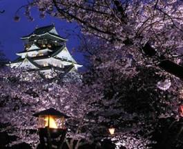 Tokyo and Osaka Prepare for Gambling Legislation Bill
