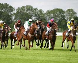 Understanding Horse Race Betting