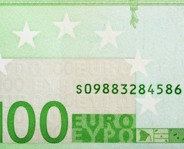Would You Bet on the Euro?