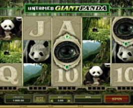 Great New Slots from Microgaming for June